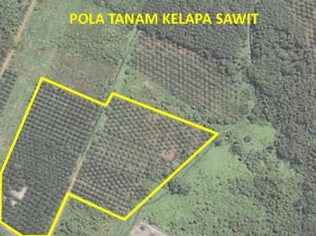 Citra Satelit Untuk Bidanga Pertanian dan Perkebunan